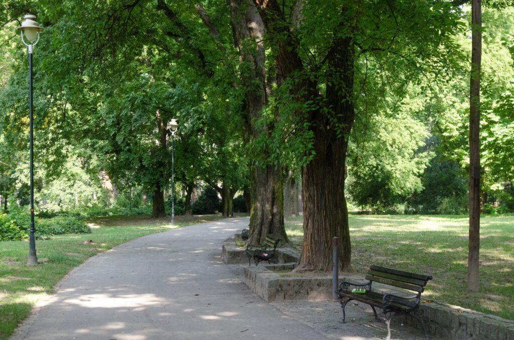 Futoški park 2