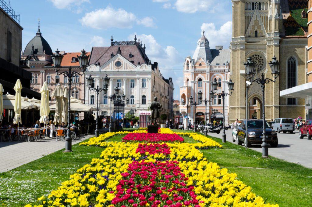 Ulica Modene Novi Sad