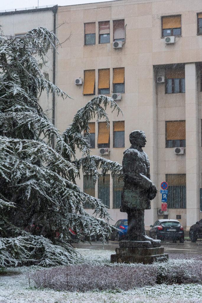 Sneg u Novom sadu 2021 1