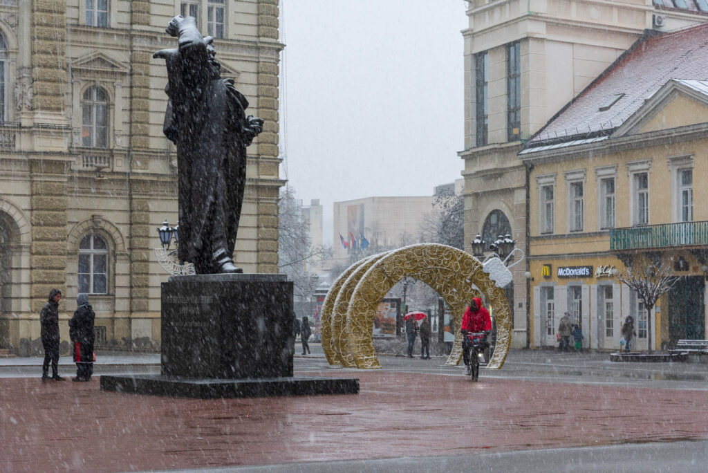 Sneg u Novom sadu 2021 13