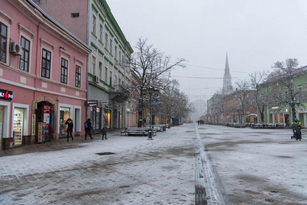 Sneg u Novom sadu 2021 14