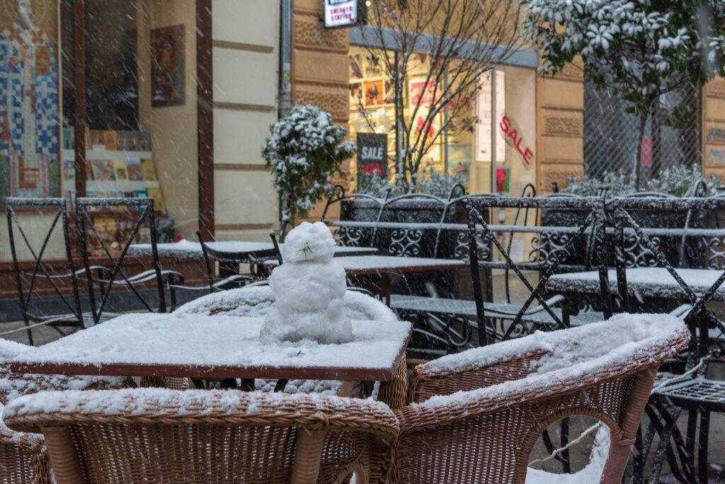 Sneg u Novom sadu 2021 17