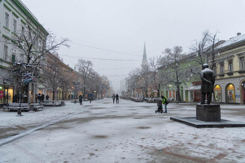 Sneg u Novom sadu 2021 18