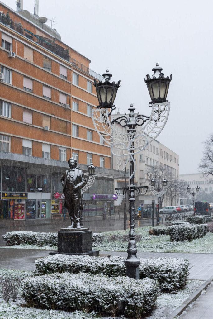 Sneg u Novom sadu 2021 8